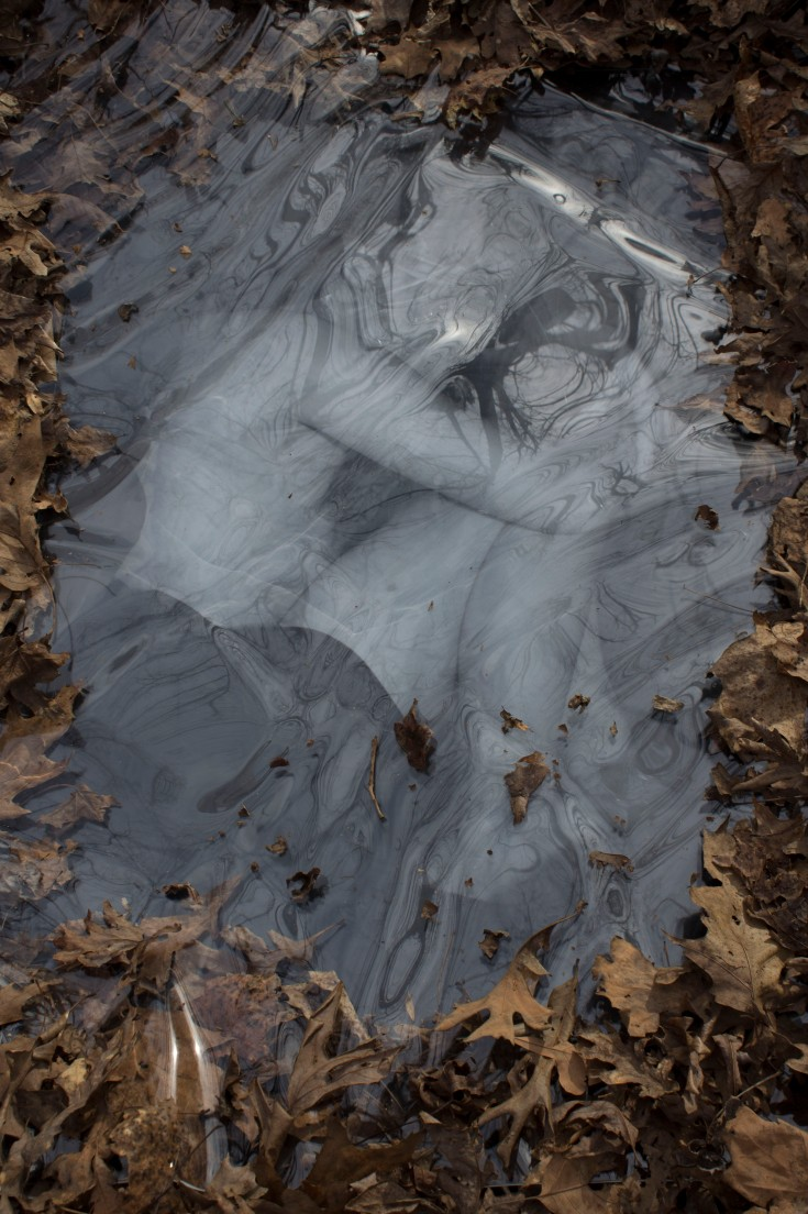 "32""x24"" Plexiglass and Digital Photograph"